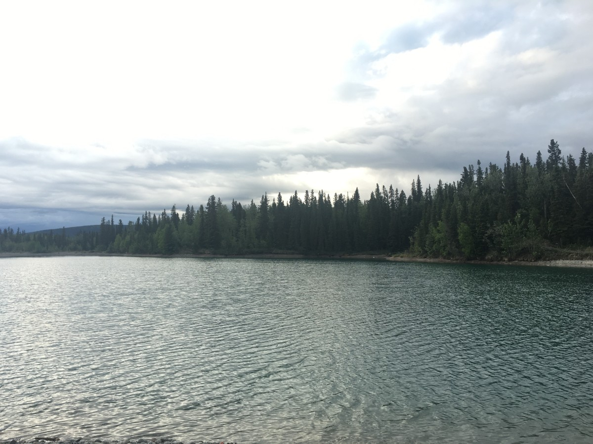 A local fishing spot we visit in the summer. Interior Alaska, south of Fairbanks.