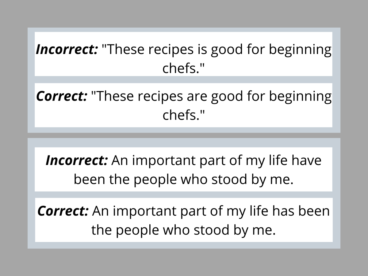 Pic 1 : Examples for Sentence-Verb Agreement Error.