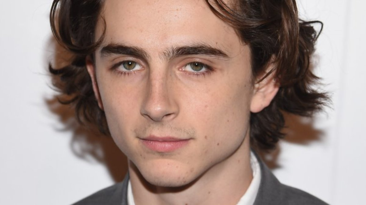 Timothee Chalamet as a Rembrandt painting?