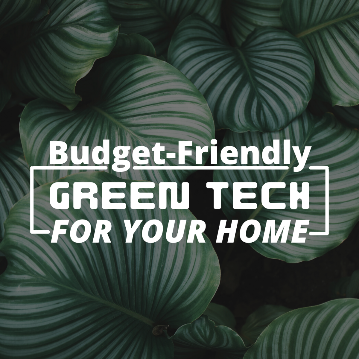 Top 4 Eco-Friendly Smart Home Products Under $200