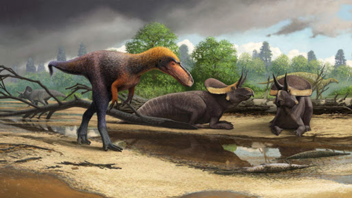 Suskityrannus passing three Zuniceratops and one Jeyawati, by Andrey Atuchin.