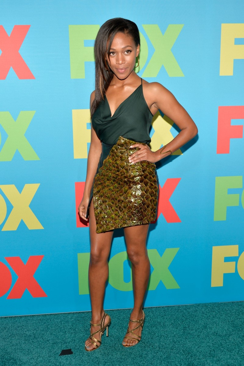 The extremely beautiful, Nicole Beharie