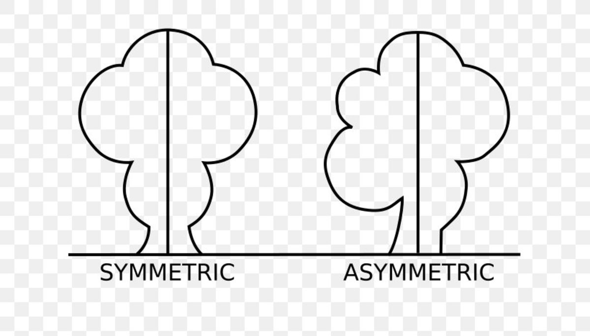 Difference between Symmetric and Asymmetric
