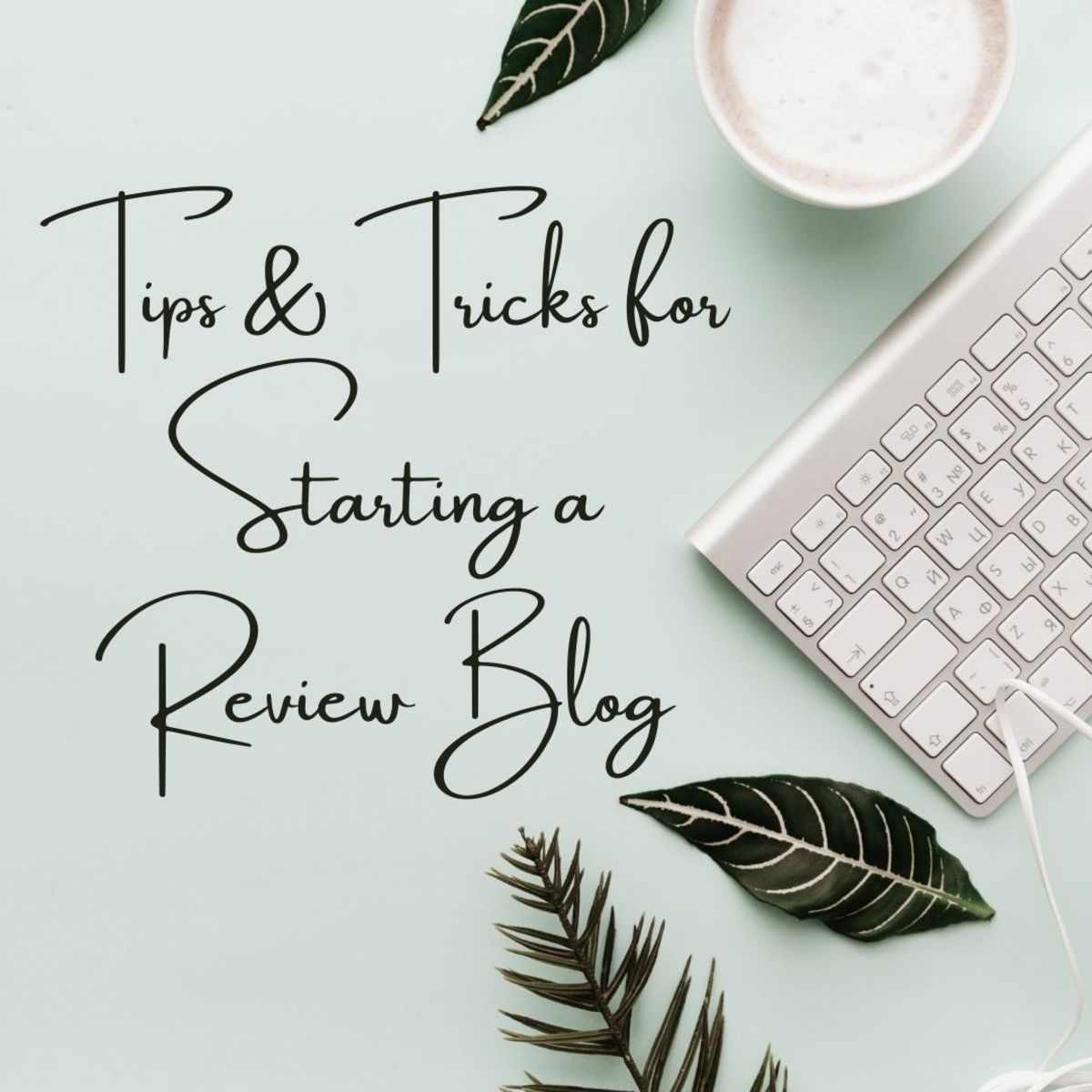This guide will provide useful advice for those contemplating starting a review blog.