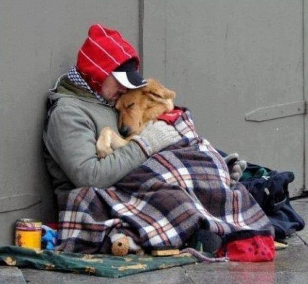 Danny a neglected little dog finds happiness with the homeless on the streets of L.A.