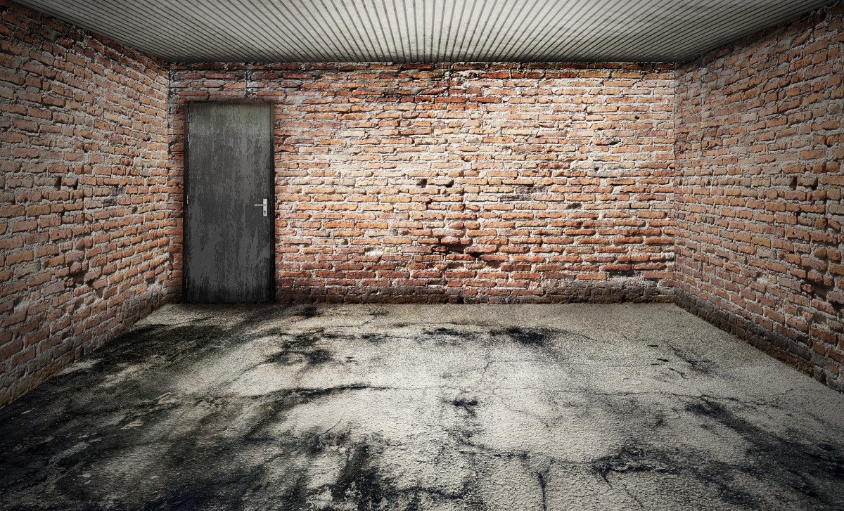 This photo of an empty garage symbolizes a major part of the album's title. I look at these 2 CD''s as covers that were written while in a garage.