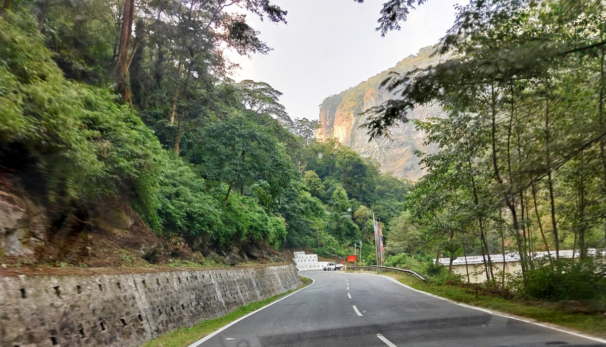 A wide road with lush greenery on its both sides