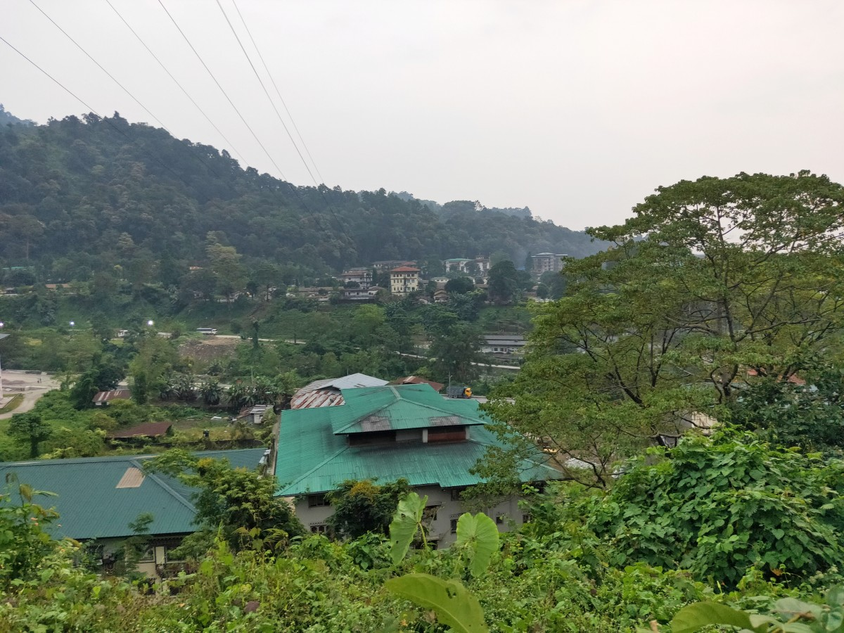 The panoramic vista of lush greenery