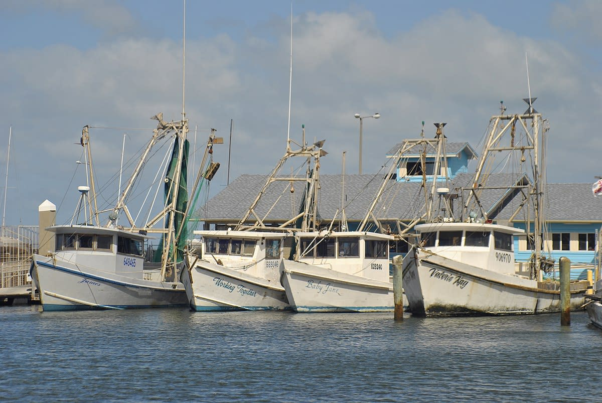 Shrimp boats tied up at the People's Street T-head in downtown Corpus Christi, TX