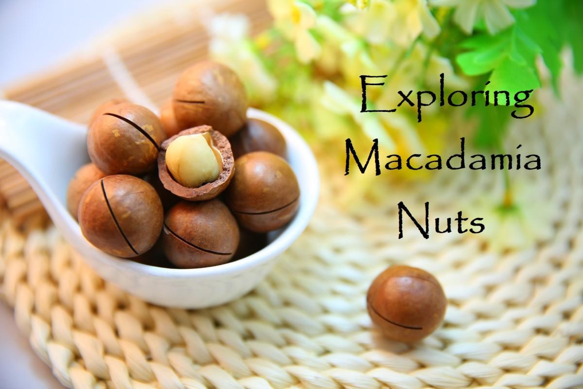 Exploring Macadamias: History in a Nutshell Plus Fun Recipes