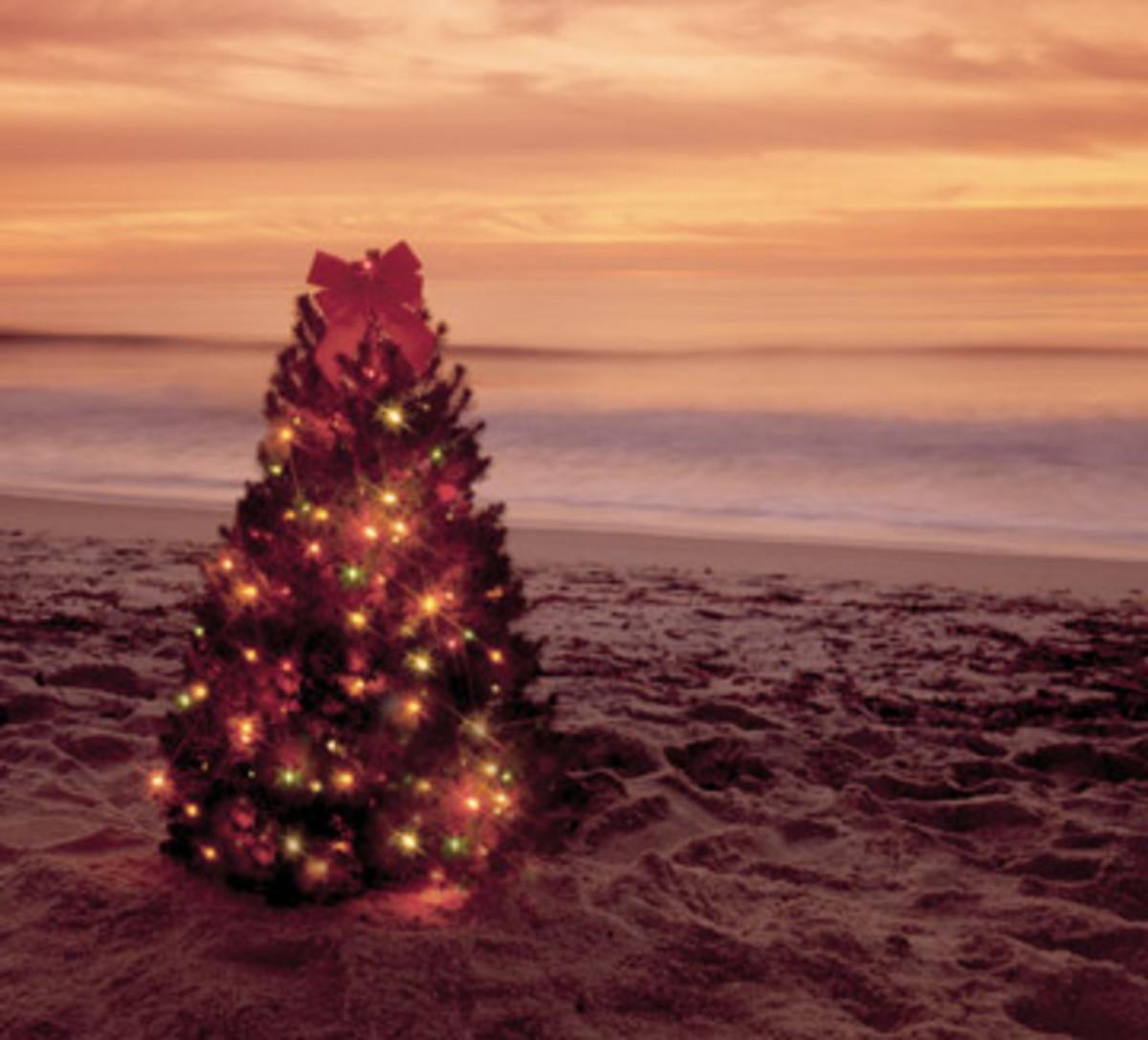 Hawaiian Holiday Recipes
