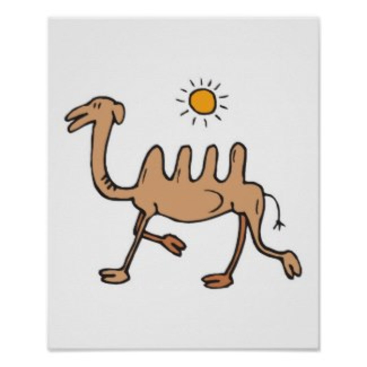 Silly Four Humped Camel