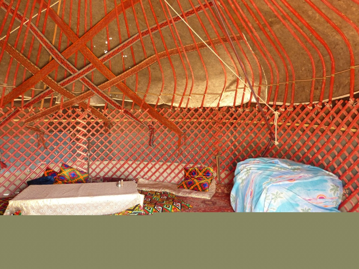 Cozy Yurt for Reading about Camels