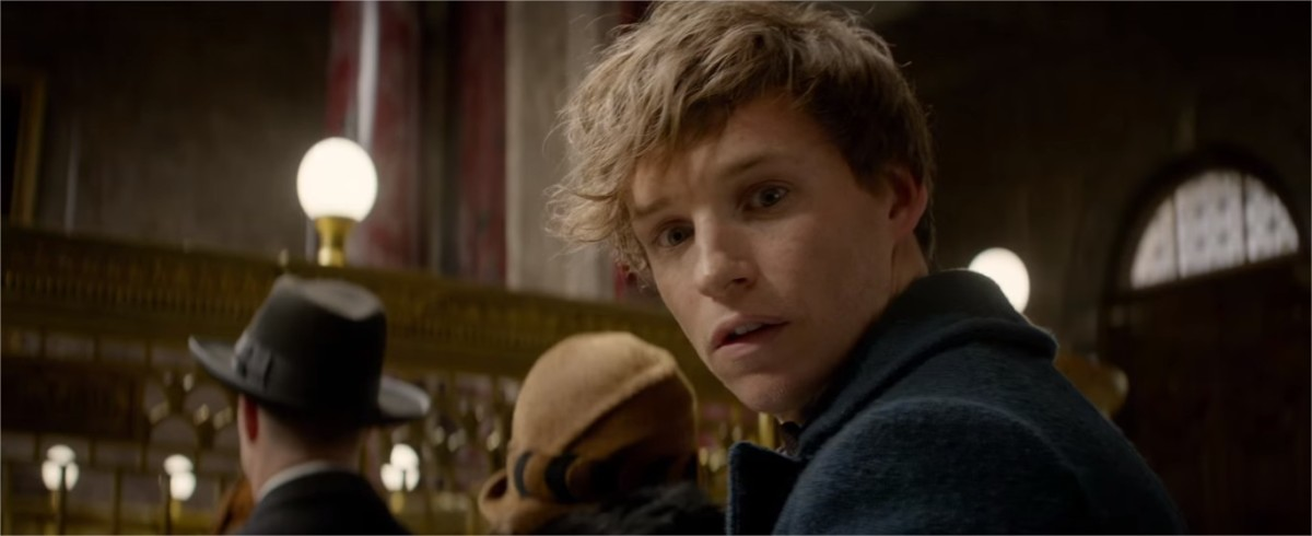 Eddie Redmayne as Newt Scamander  | Newton Scamander is a famed Magizoologist and fictional author of Fantastic Beasts and Where to Find Them | Harry Potter Spinoff Series Fantastic Beasts and Where to Find Them (2016)