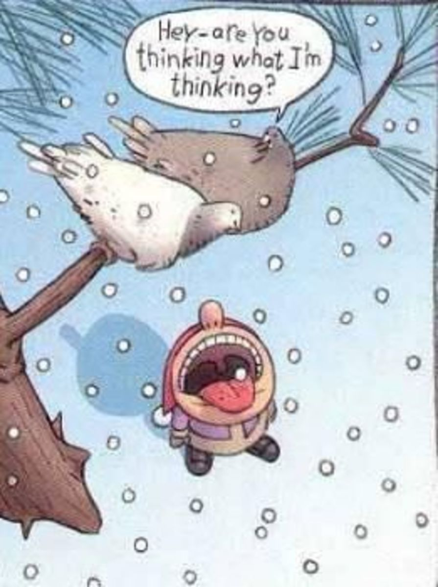 08 - Catching Snowflakes