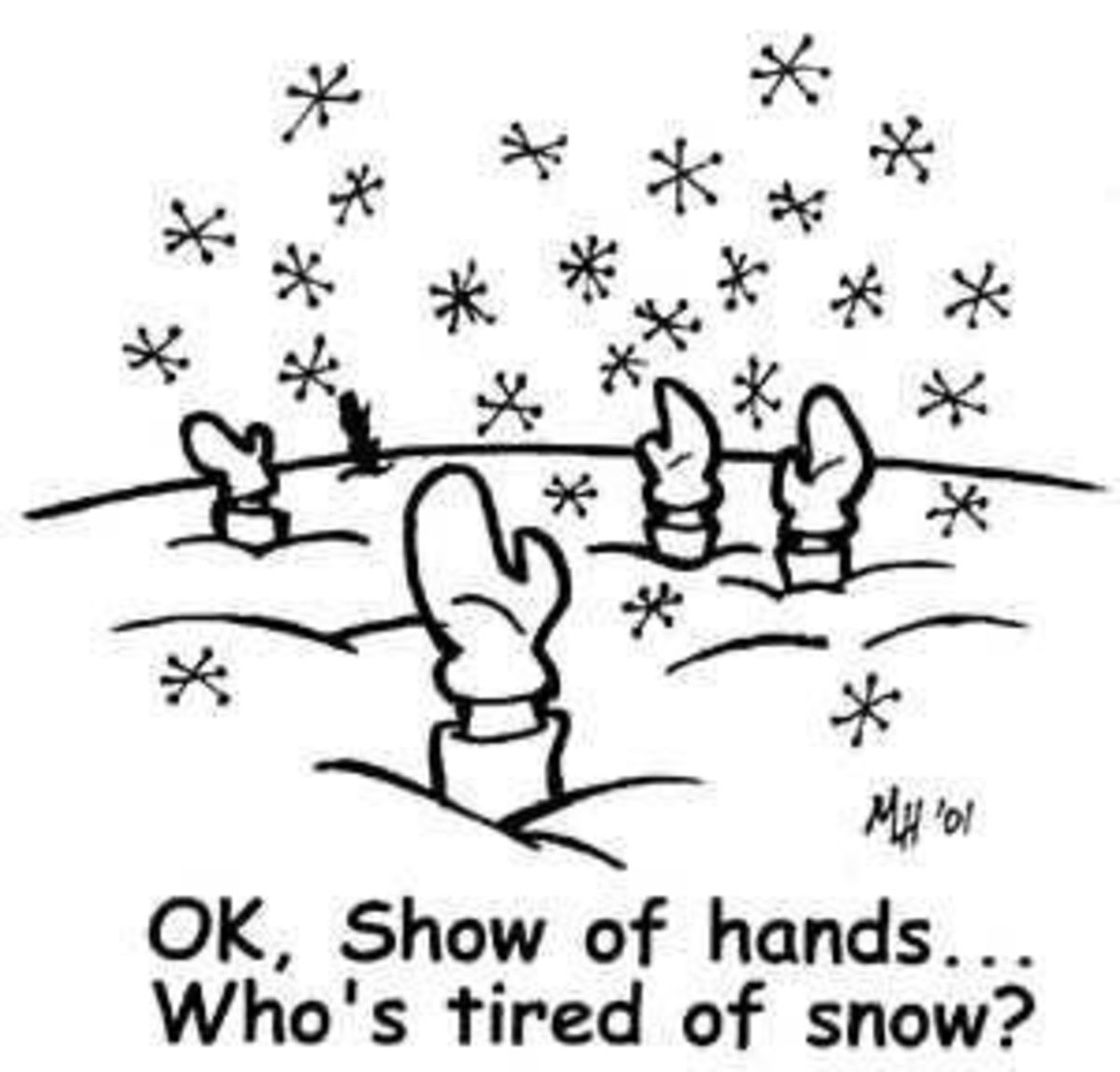 31 - Whose Tired Of Snow?