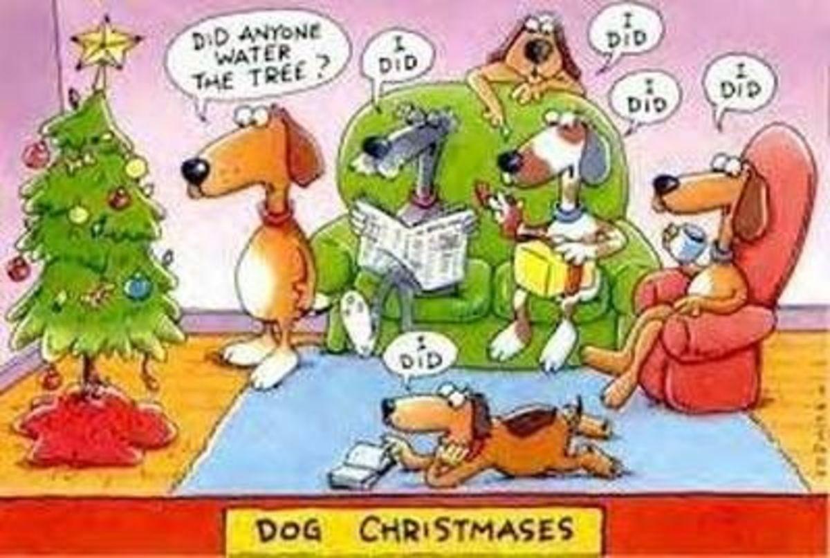 20 - Dogs Christmas