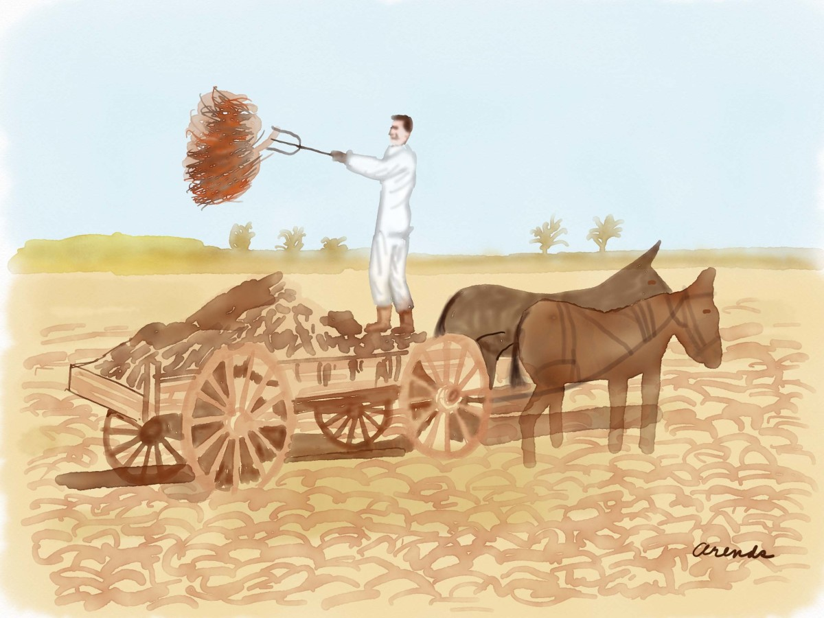 What Was Farm Life 100 Years Ago Really Like?