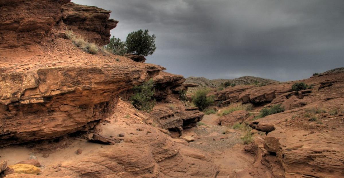 Desert benches -
