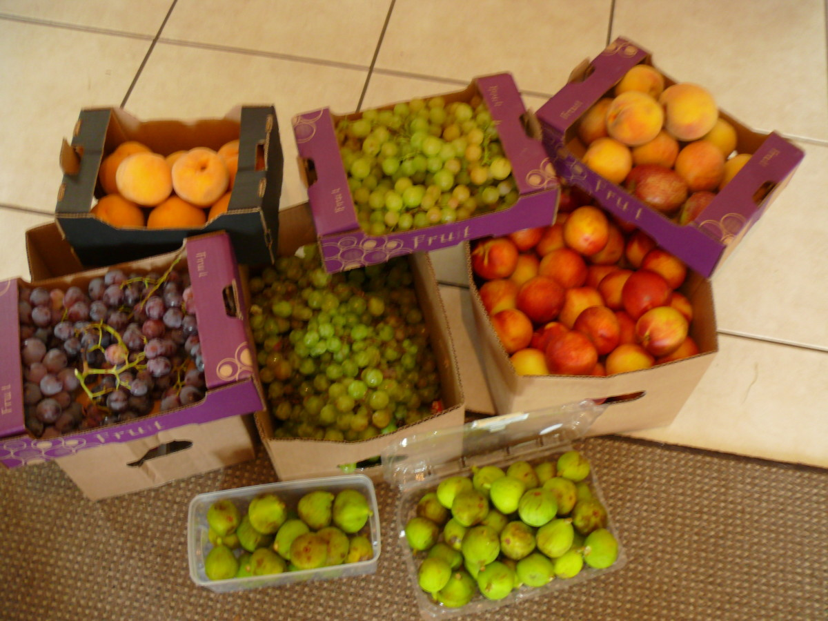 Selection of fruit picked or bought from fruit farms in area