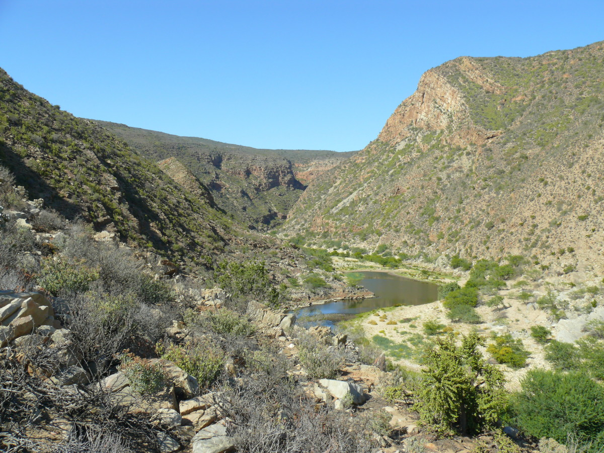 View from the Tortoise Trail