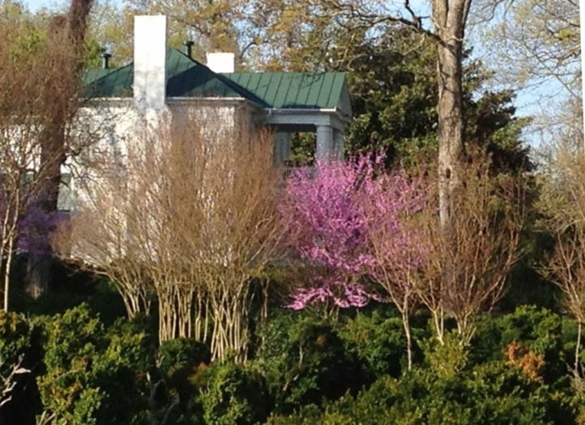 Springtime is especially beautiful, with redbuds, dogwoods and bridal wreath
