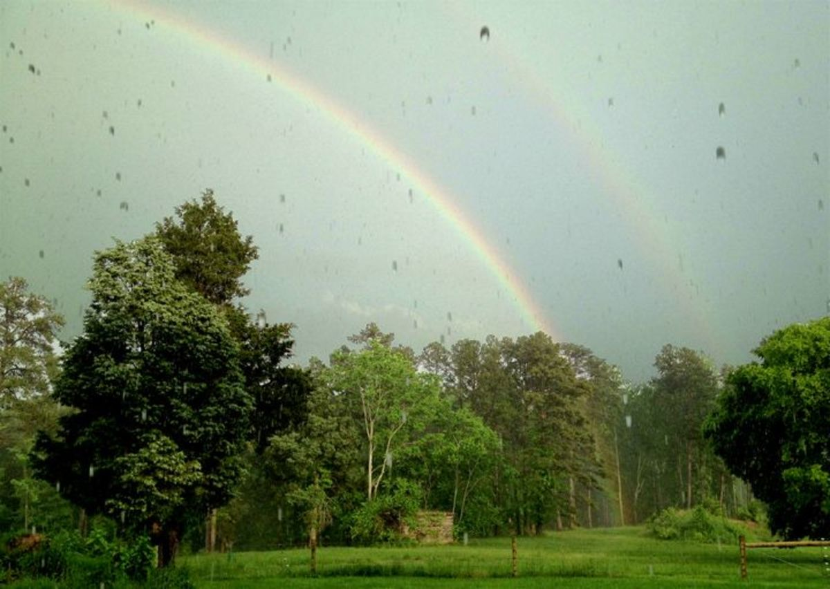 A double rainbow over the pasture