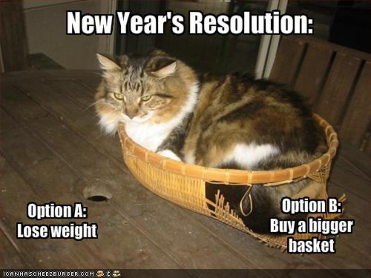 New Year's Resolution #2 - Lose Weight