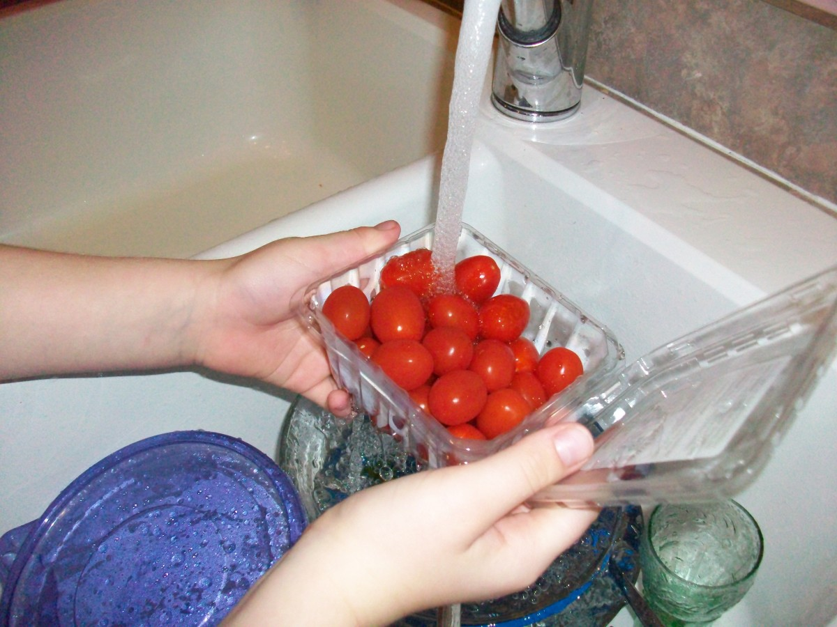 Washing the tomatoes