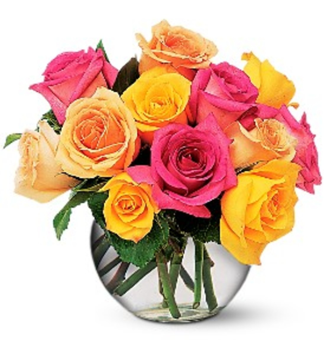 Meaning of Roses Colors and Number as Romantic Gift for Her