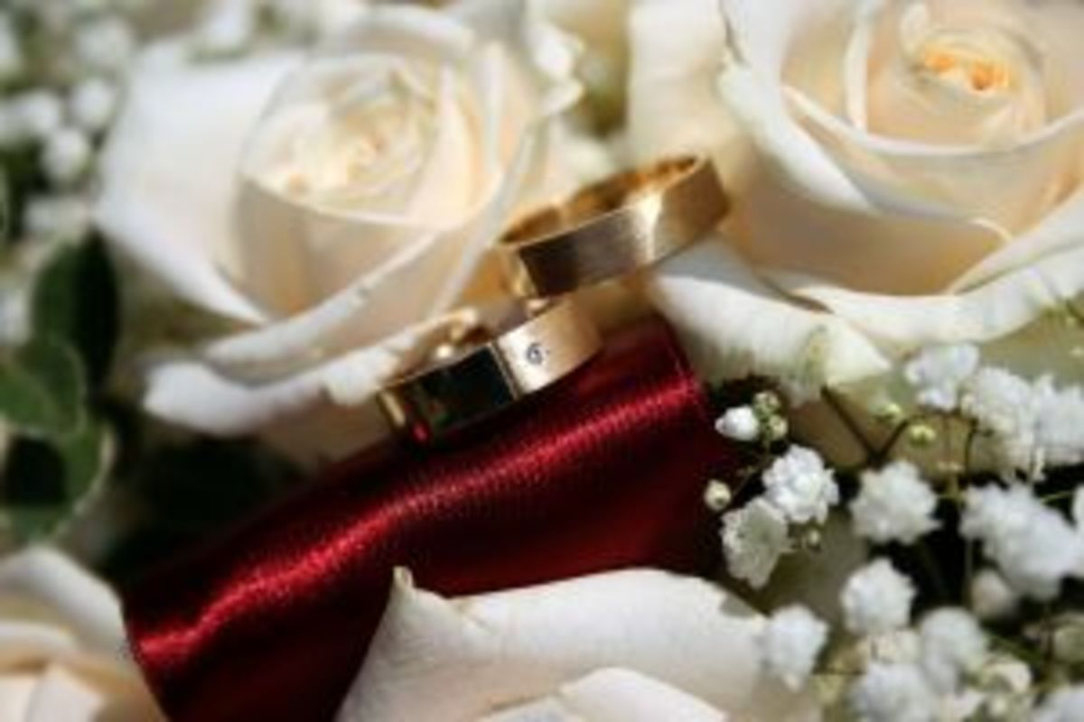 White roses meaning is purity love of wedding