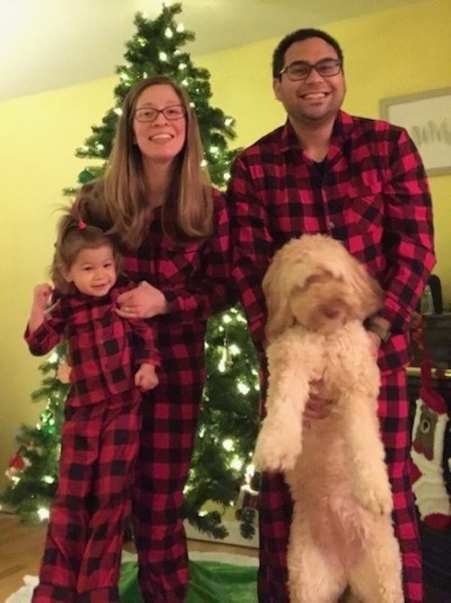 Complete holiday card fail ;) This was our first attempt. See the winner at the end!