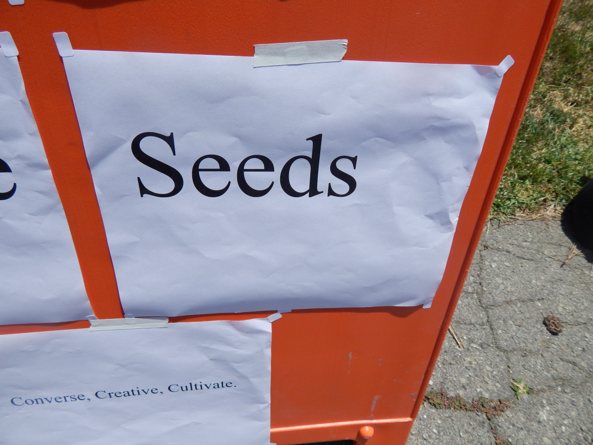 Seeds are planted through positive words and actions