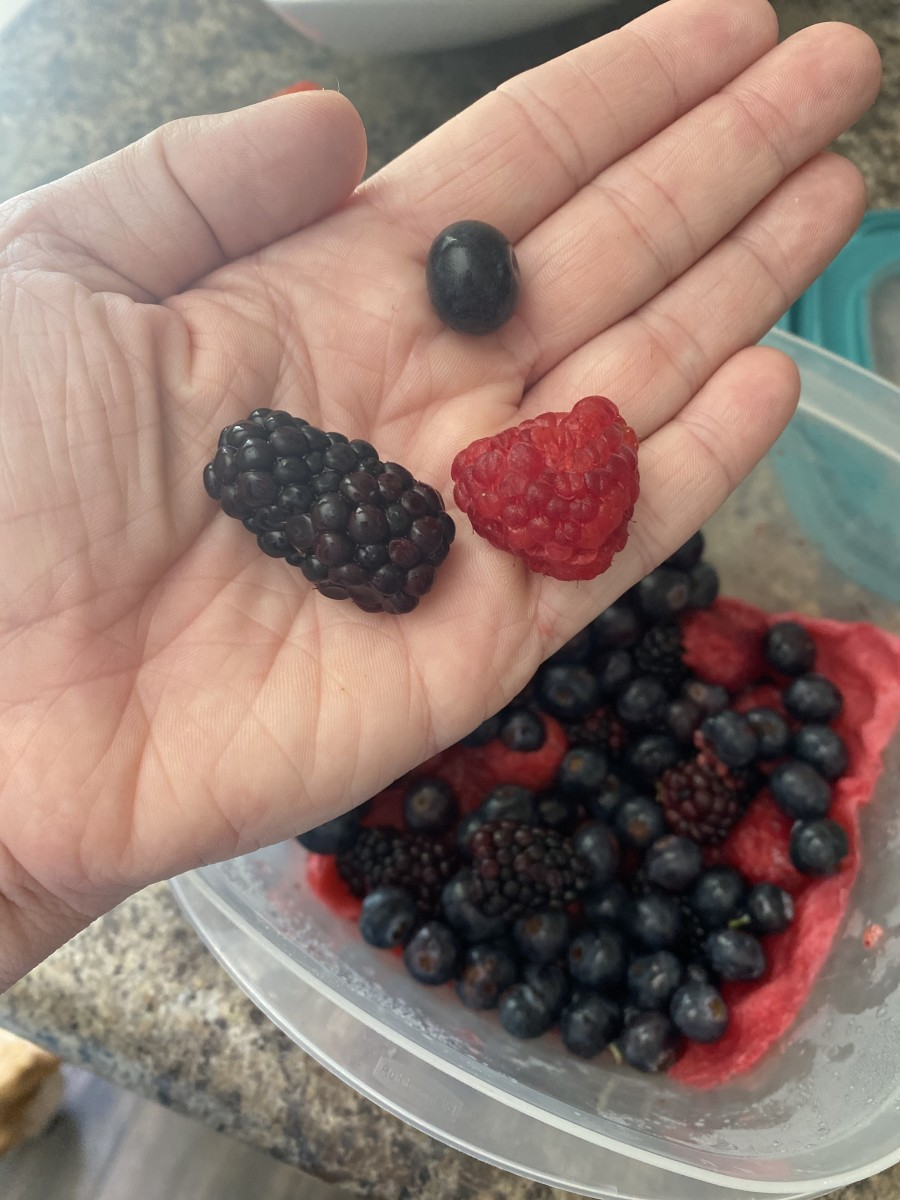 These berries are at least 2 weeks old and still very much in tact!