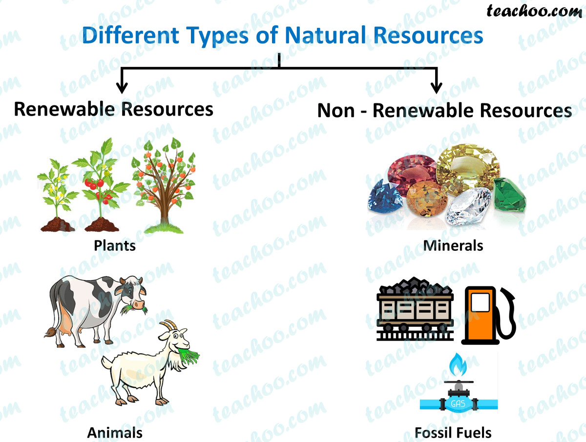 some types of natural resources