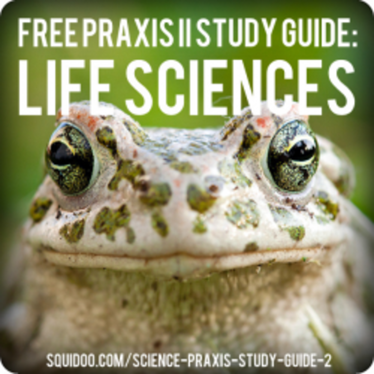 Free PRAXIS II Life Sciences Study Guide