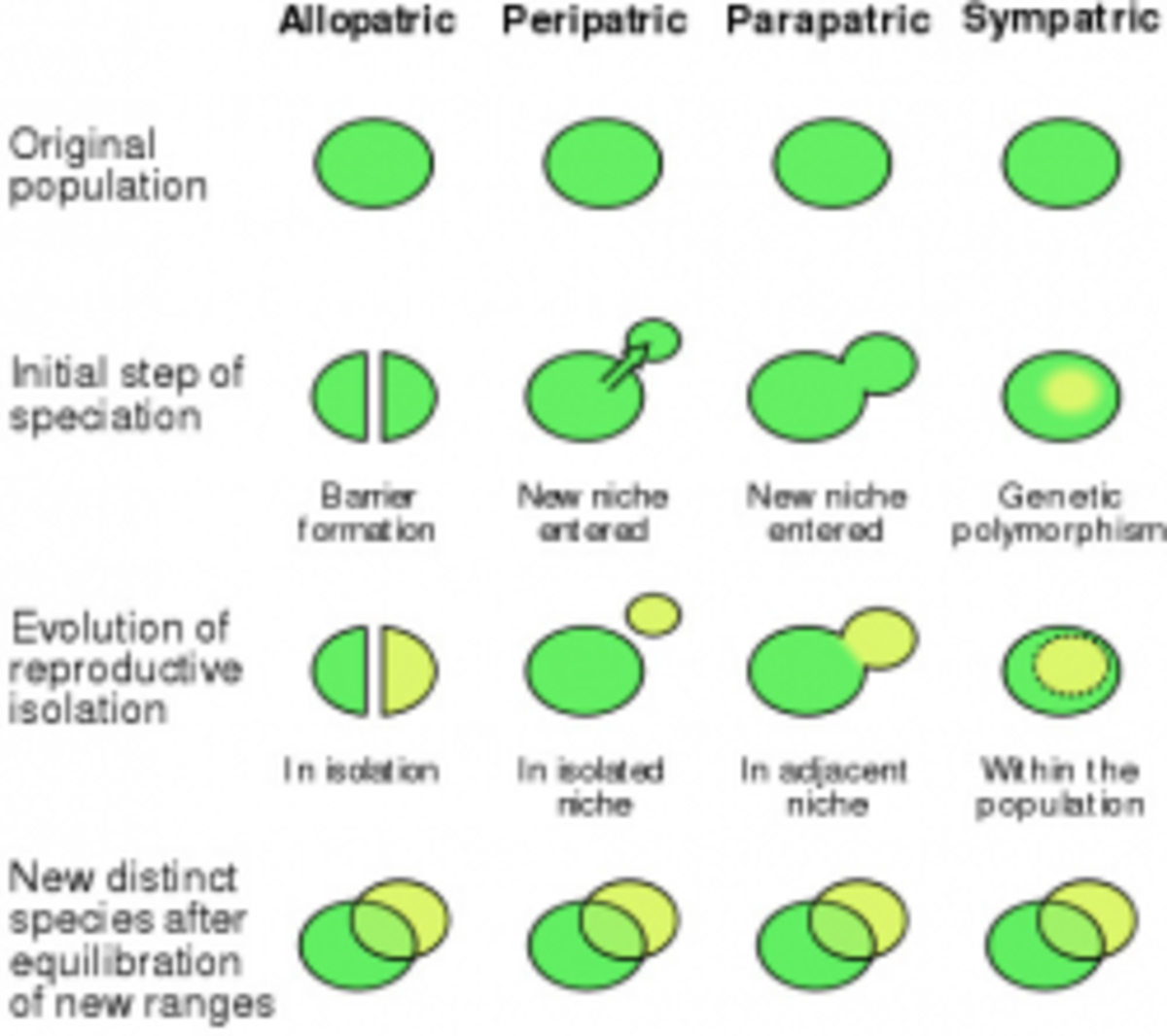 Speciation Diagram