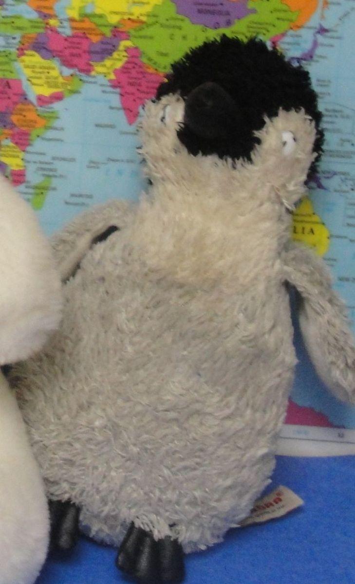 polar-exploration-lesson