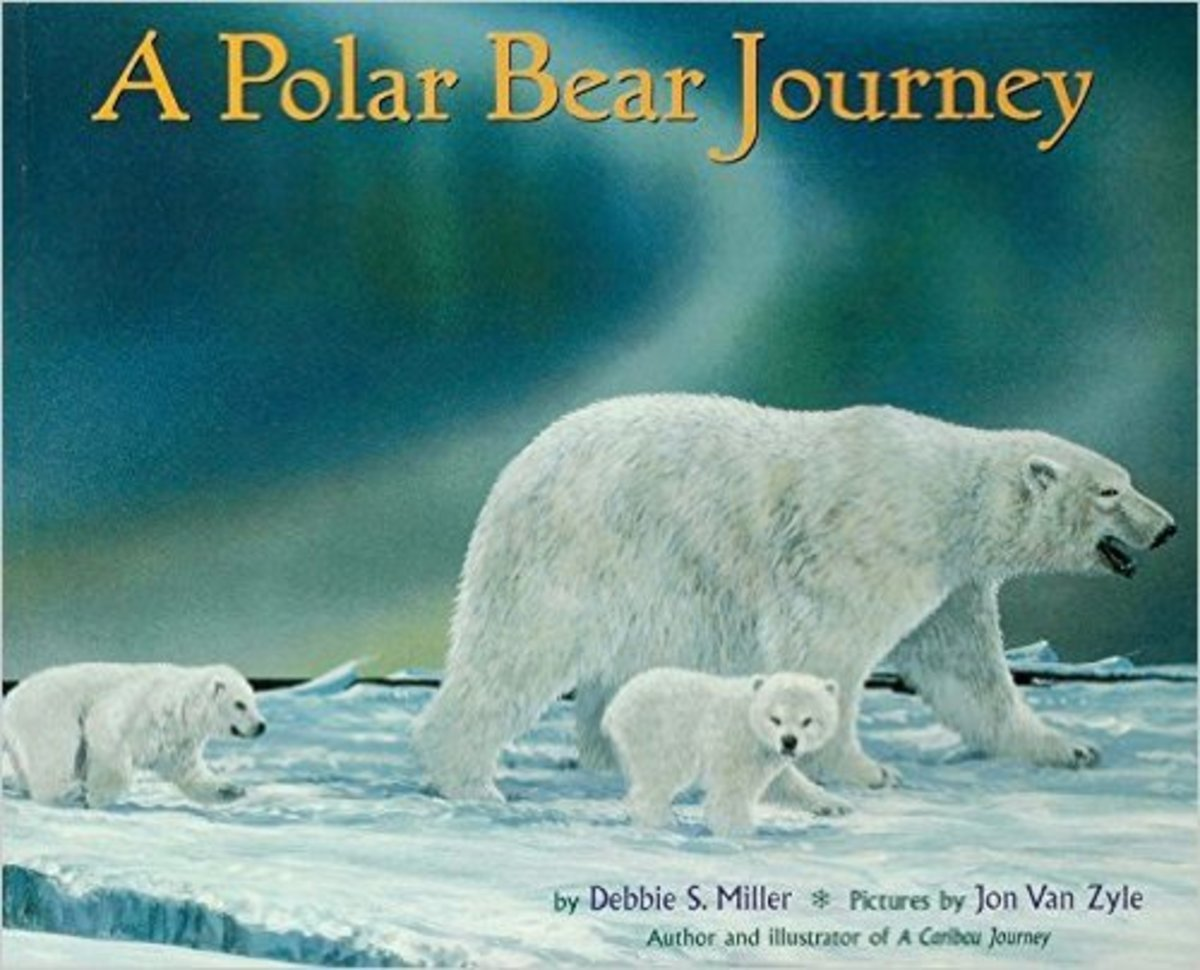 A Polar Bear Journey by Debbie S. Miller - Image is from amazon.com