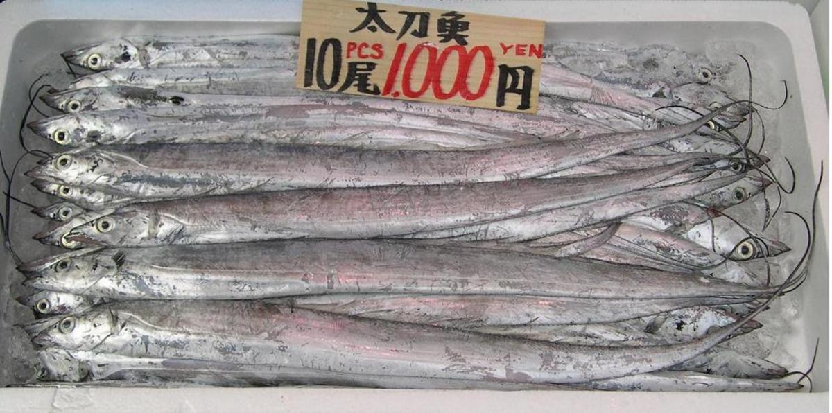 Bumbletonians benefit from their unique Whitebait, sold in the fish markets of countries some have not ever heard of.