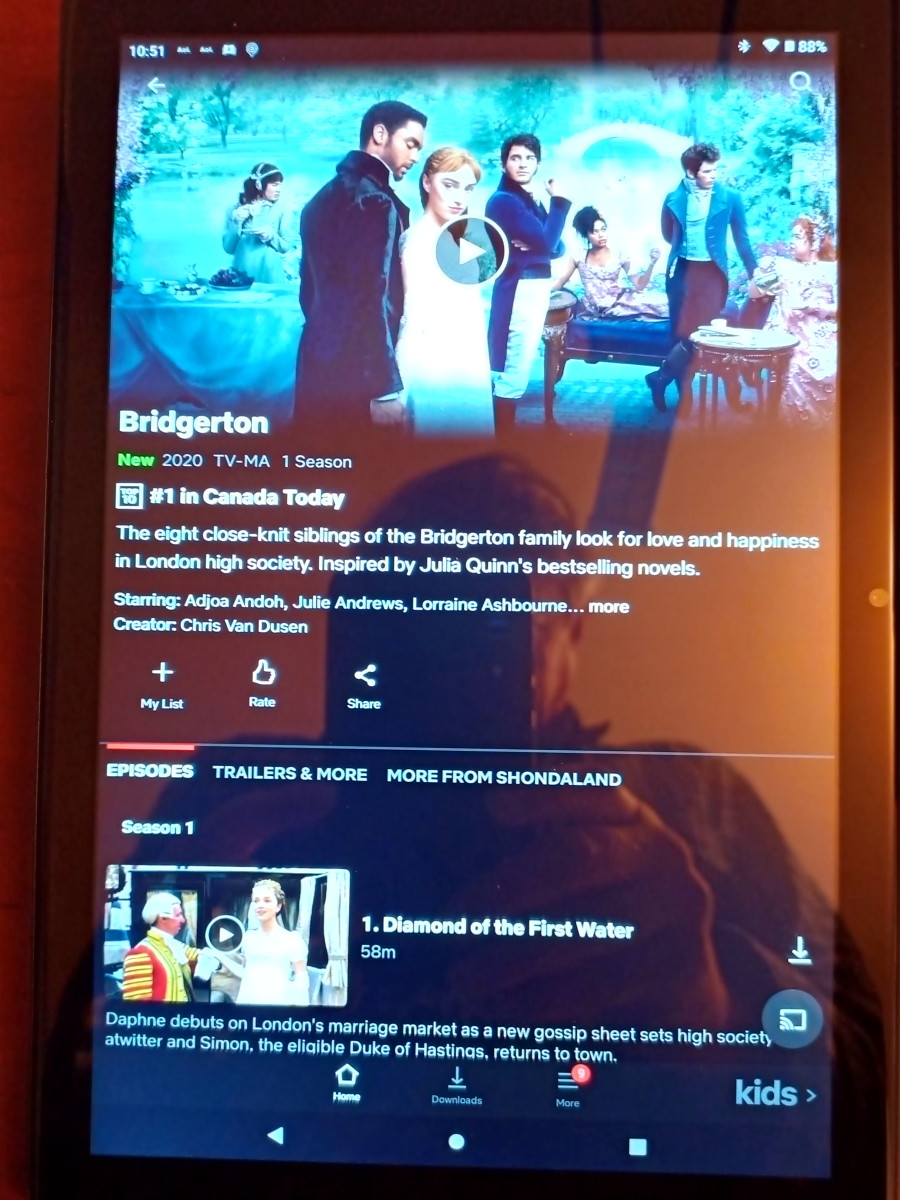 Netflix application.  Picture is far better than indicated by these photographs