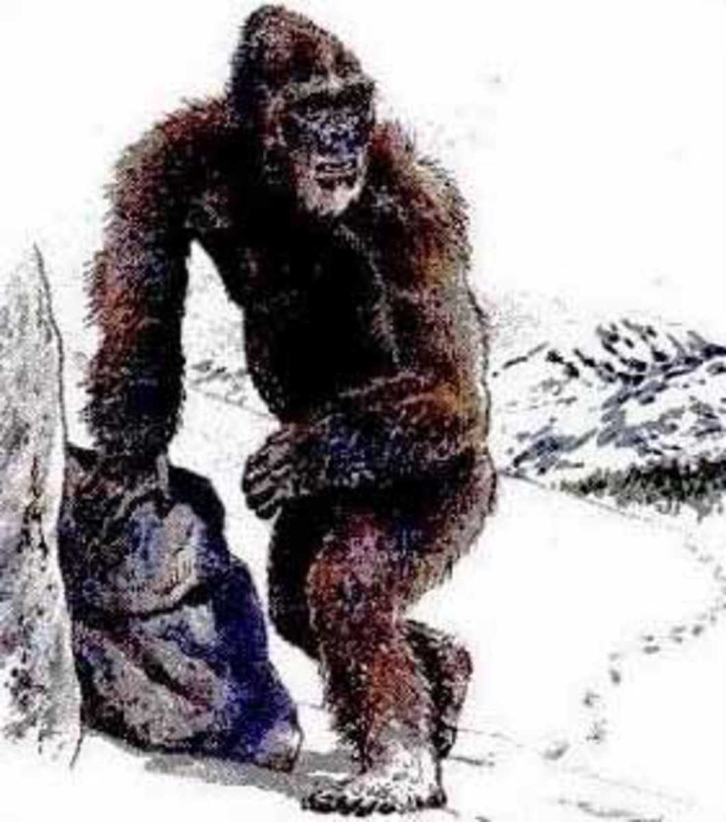 An illustration of a Yeti. Looks a lot like Bigfoot too.