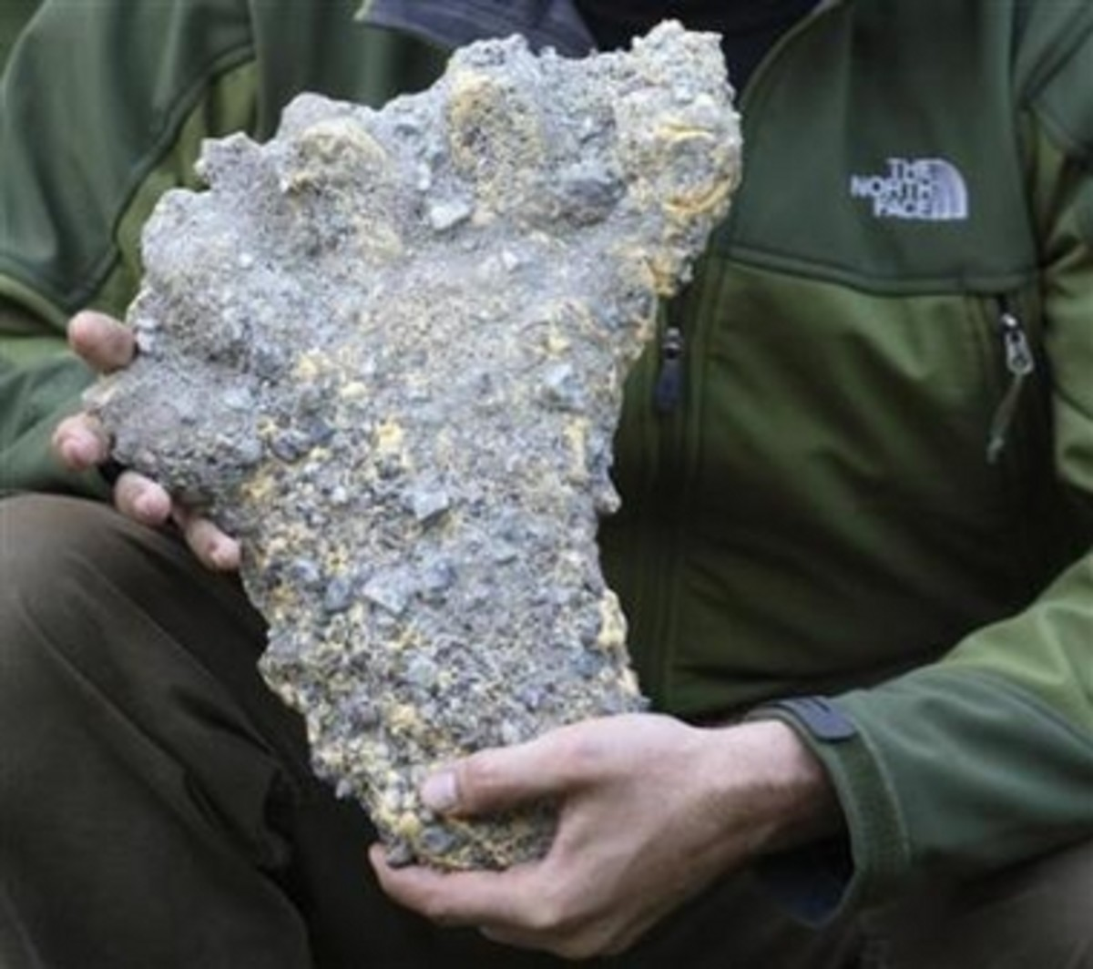 Cast of an alleged Yeti print.