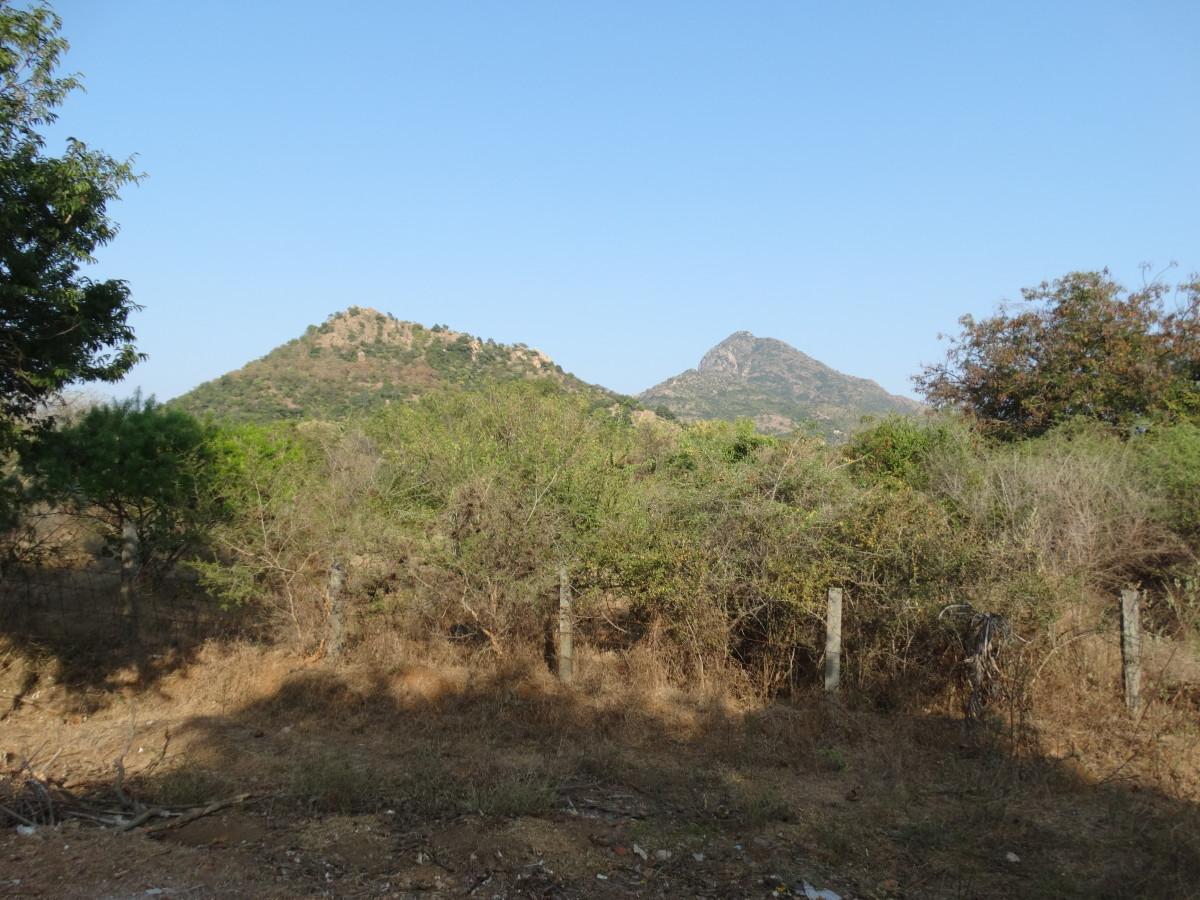 Arunachalam Giri : 12.1800 degrees North, 79.0400 degrees East.