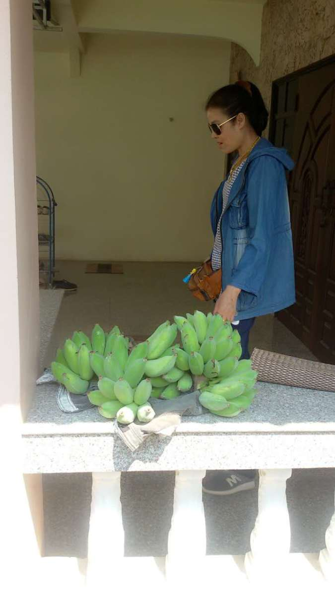 Suai with our harvested bananas