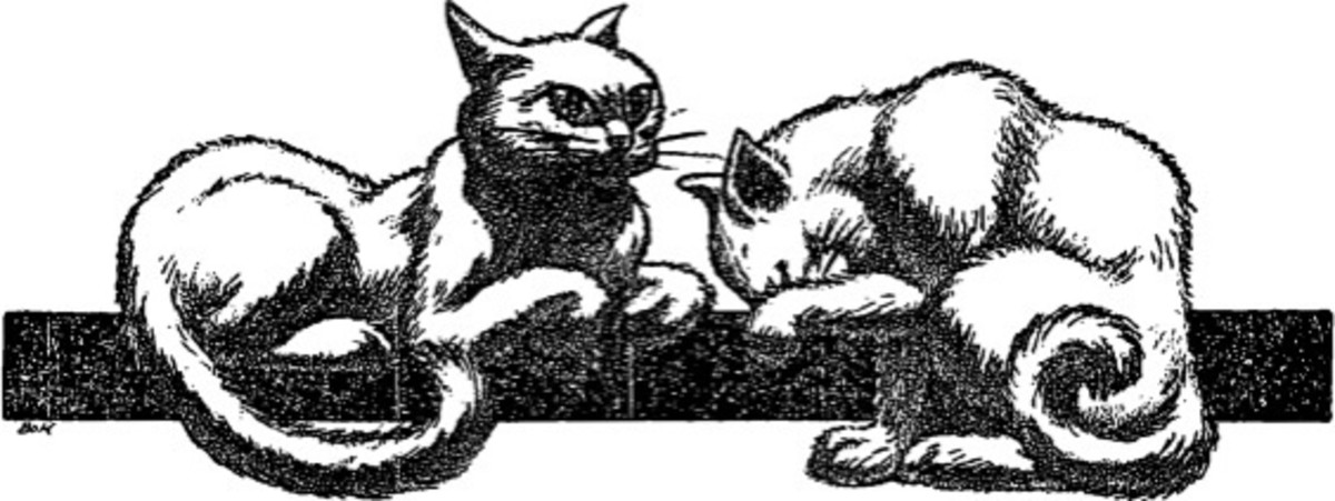"Hannes Bok illustration for ""The Cats of Ulthar"""