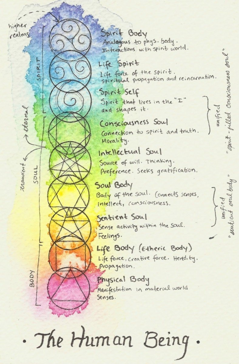 These are descriptions of 9 of the 15 recognized energetic body designations.