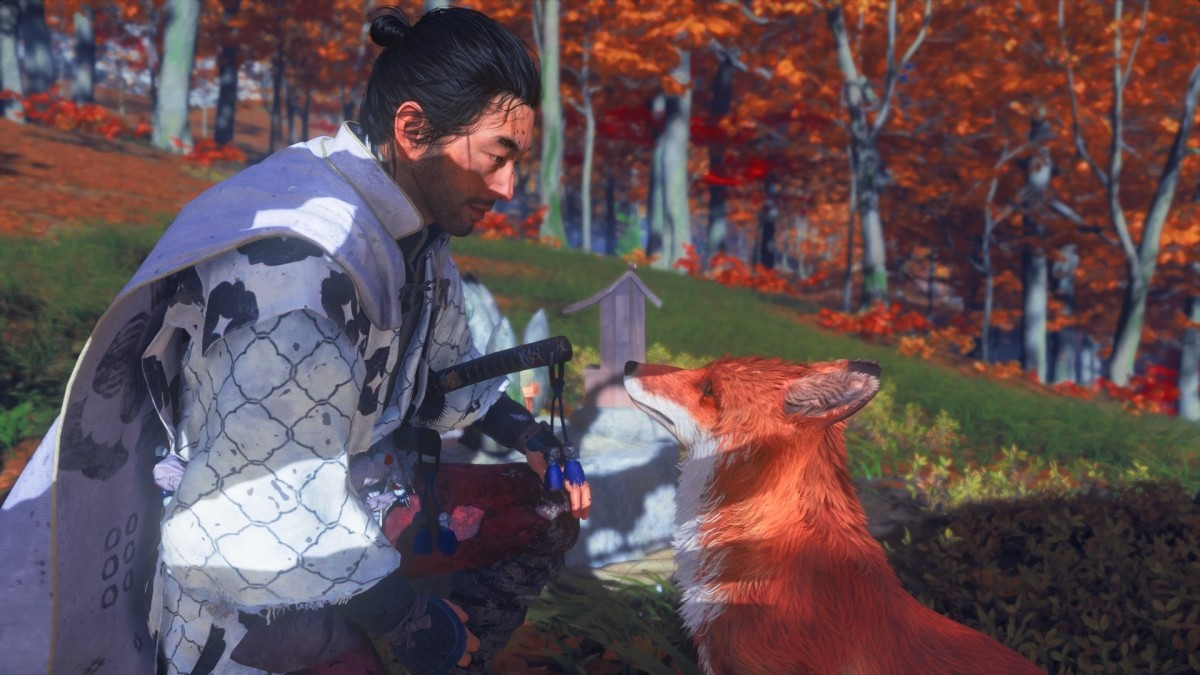 Yes, you can pet the fox.