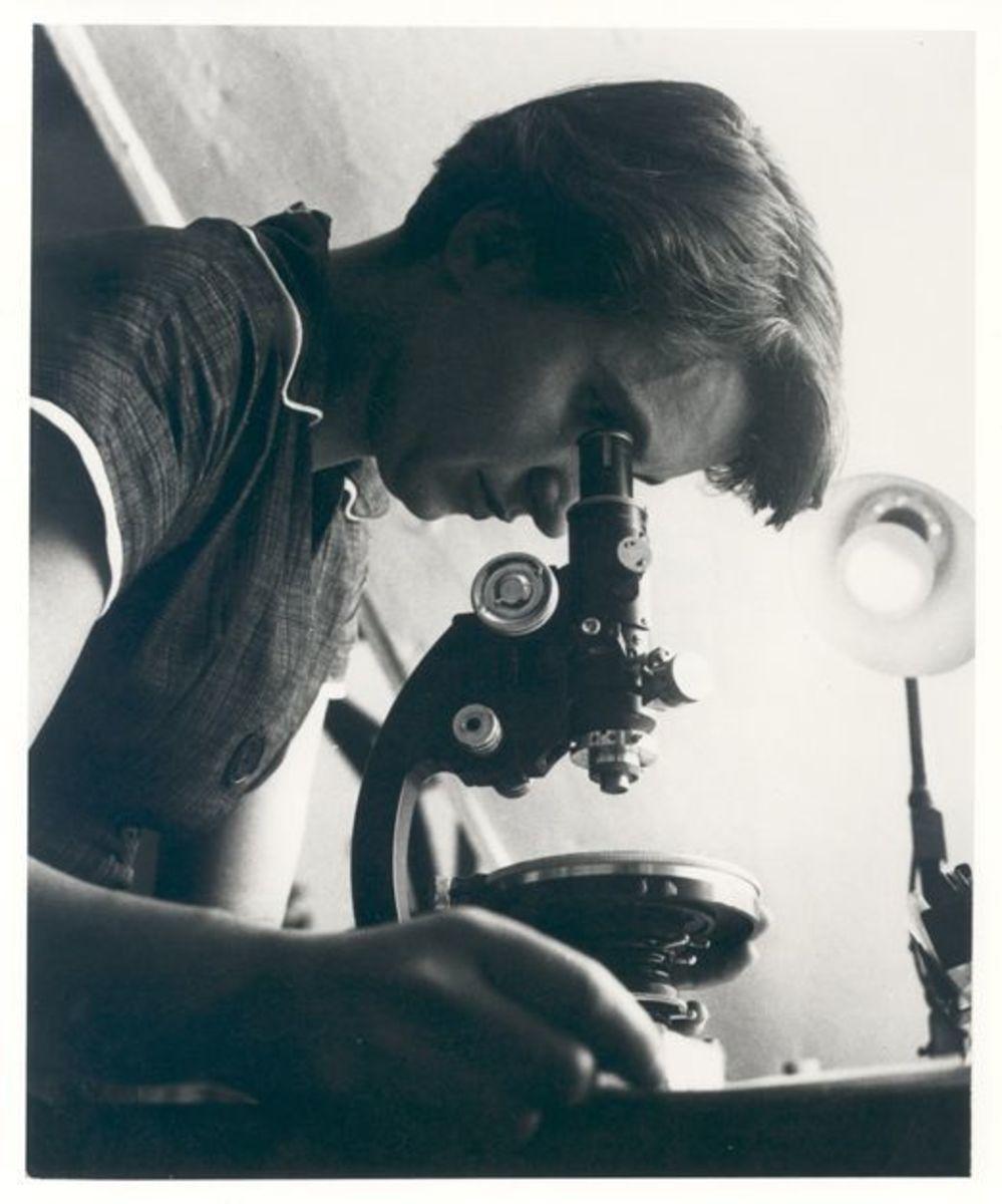 Rosalind Franklin in 1955.