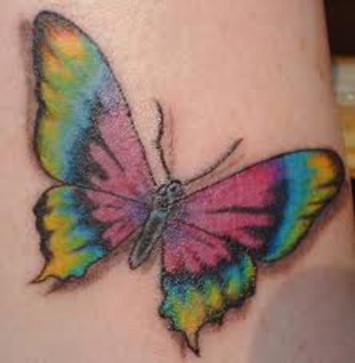 This butterfly shows maximum extent of colors.